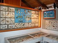 Geschichte Brauchtum Museum Amrum