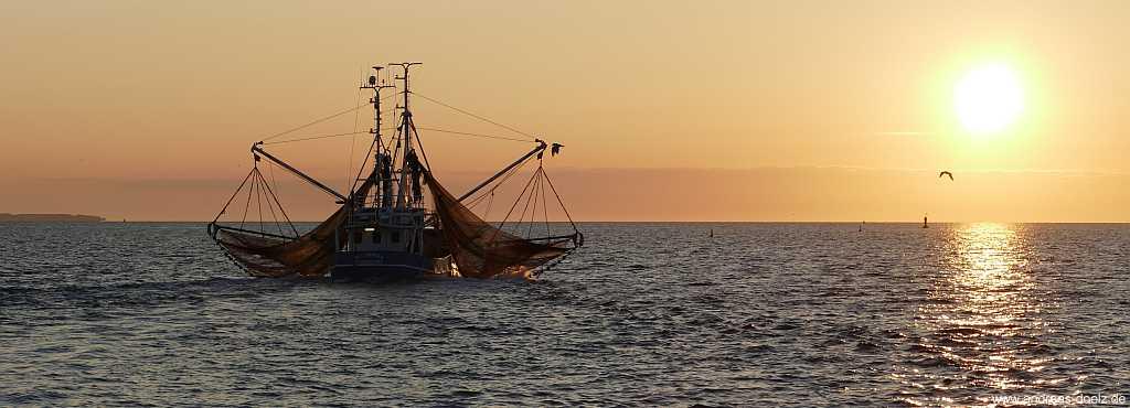 Fischkutter bei Steenodde auf Amrum