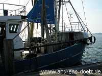 Häfen Fischkutter Steenodde Amrum