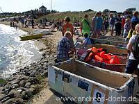 Häfen Papierboot Regatta Molenfest Steenodde Amrum